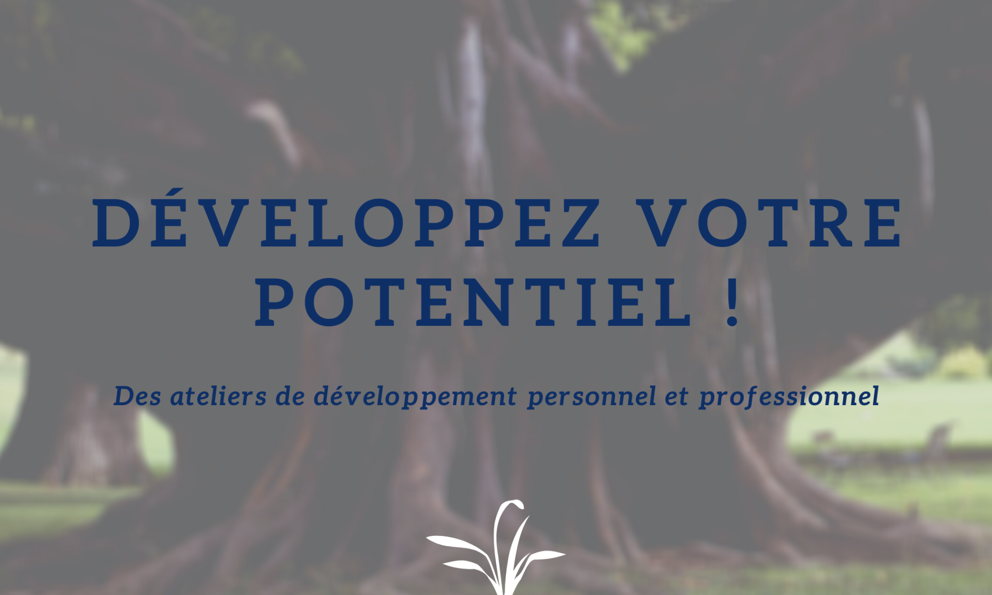 Ateliers-Formations